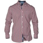 D555 – Tall Super Gingham Check Long Sleeve Button Down Shirt – Red/Navy