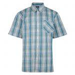 Kam Oxford Check Short Sleeve Shirt – Green