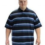 Brooklyn Polo Shirt – Blue Striped
